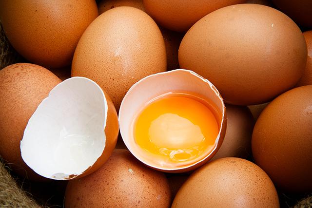 栄養豊富な卵